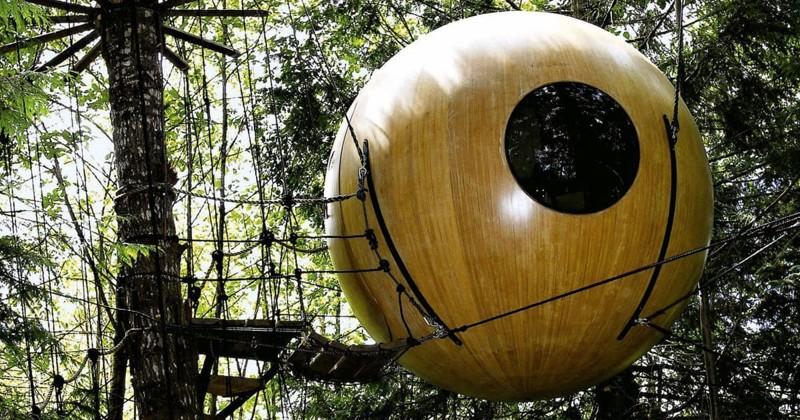 15 самых необычных домов на деревьях со всего мира (16фото)