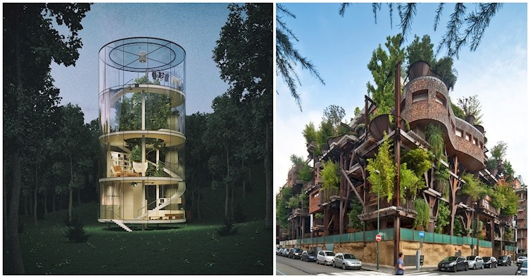 12 сооружений, построенных вокруг деревьев (13фото)