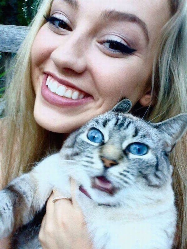 Коты, которые категорически не хотят фотографироваться и всем своим видом показывают это (10фото)