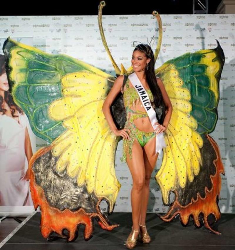 Бабочки - великолепные создания природы. И мы их любим (28фото)