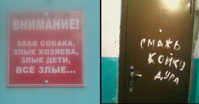 Соседей не выбирают (20фото)