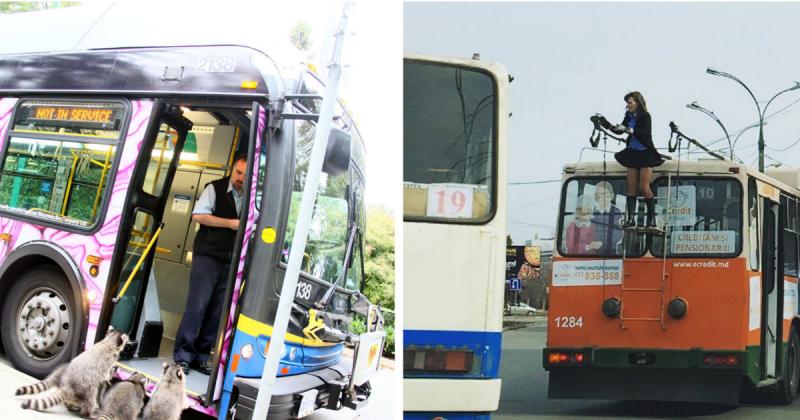 Общественный транспорт: острые ощущения гарантированы! (20фото)