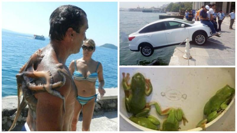 Отпуск из Ада: фотографии из турпоездок, в которых что-то пошло не так (16фото)