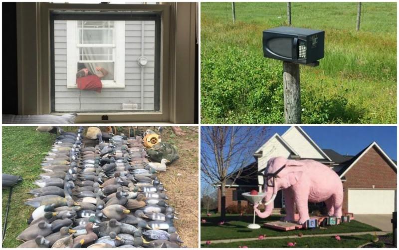 Когда с соседями - не соскучишься: 35 фото-историй (36фото)