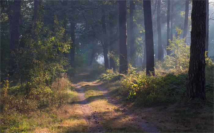 Красивые пейзажи (18фото)