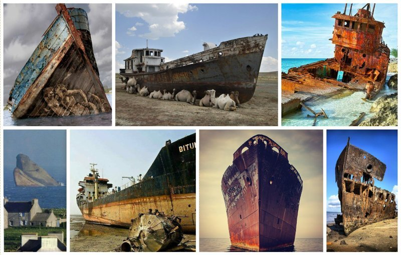 Выброшенные морем, умирающие под ветрами (50фото)