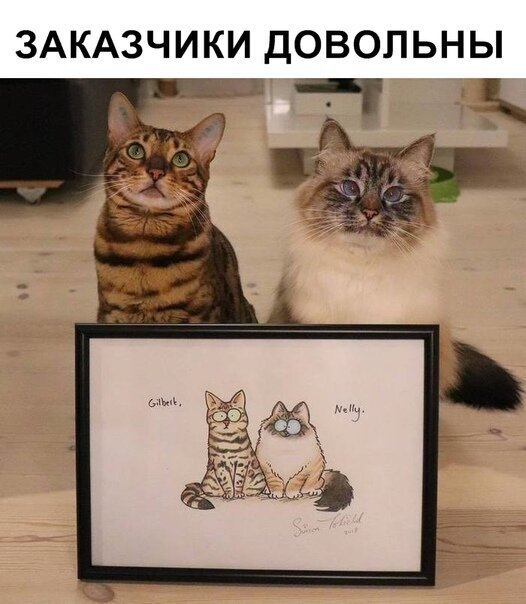 Прикольные и смешные картинки (50фото)