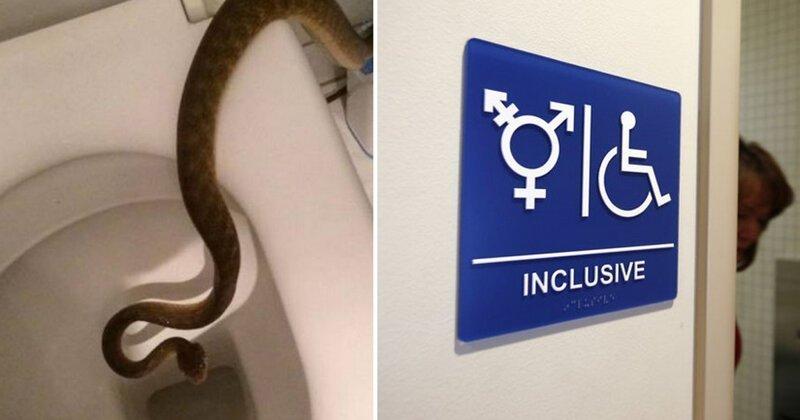 15 туалетов всего мира, которые заставят вас забыть, как ими пользоваться (18фото)