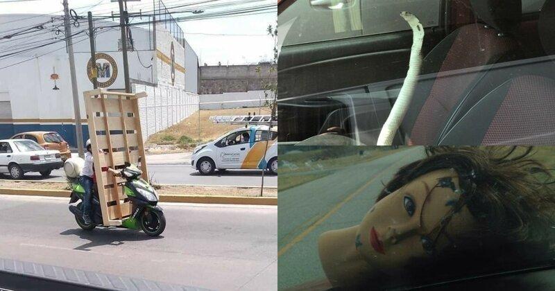 20 невероятных ситуаций, с которыми автомобилисты столкнулись на дороге (23фото)