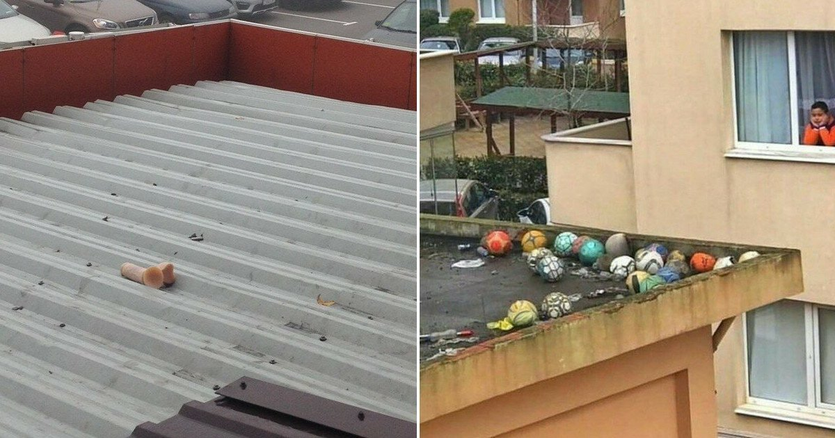 На крыше дома твоего... Подсмотрено (18фото+2гиф)