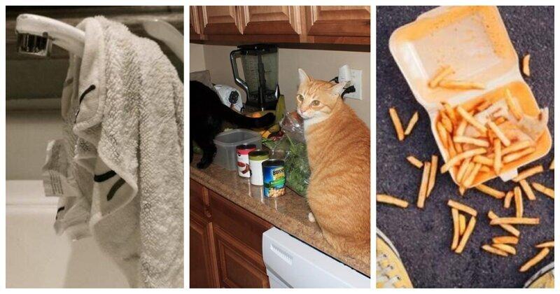 7 кухонных привычек, от которых, дабы жить долго и счастливо, следует отказаться (8фото)