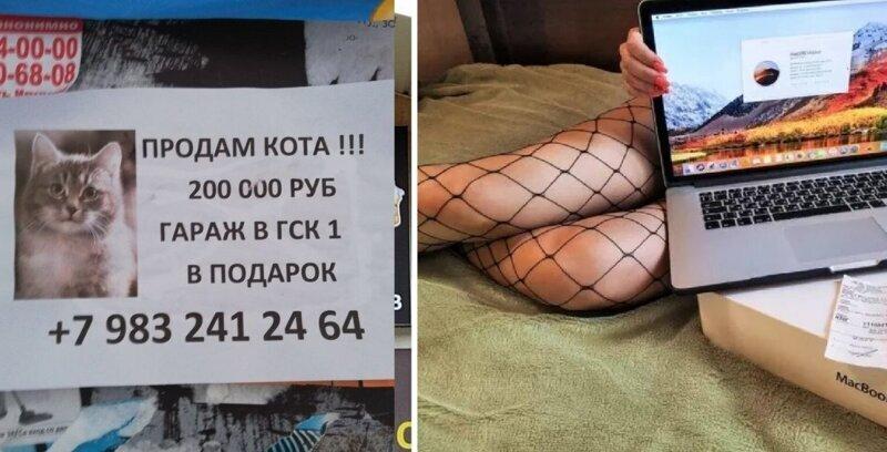 Боги маркетинга, способные продать даже кота с гаражом (20фото)