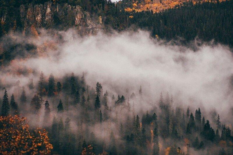 Осень (20фото)