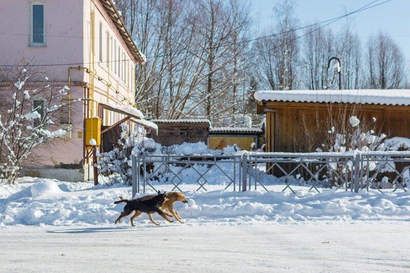 Колорит российской провинции (50фото)