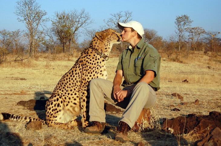 Влюбленные животные (23фото)