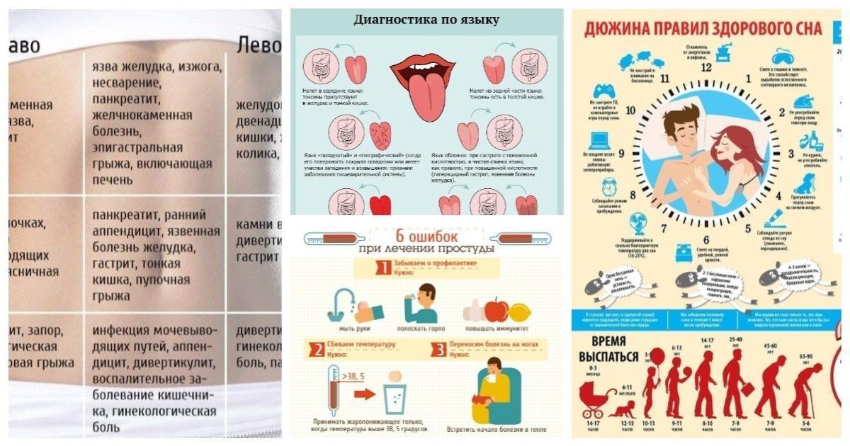 25 очень важных шпаргалок о здоровье: диагностика и профилактика (26фото)