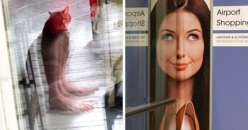 18 случаев, когда отражение делало фотографию только лучше (19фото)