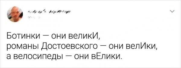 Юмор про русский язык - суровый и беспощадный (14фото)