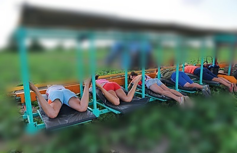 Попробуйте догадаться, чем заняты люди на этой фотографии (12фото+1видео)