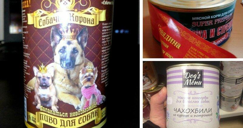 То чувство, когда кот с собакой кушают лучше тебя (20фото)
