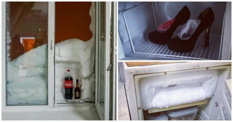 А что у вас в морозилке? 15 примеров забавного хранения в холодильнике (16фото)