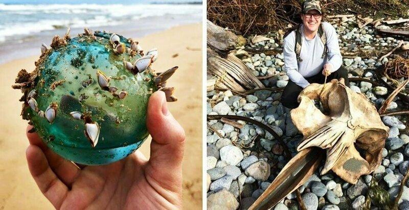 20 необычных и даже пугающих вещей, которые люди когда-либо находили на пляжах (21фото)