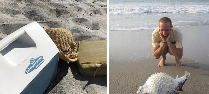 Чего только не увидишь на пляже! (34фото)