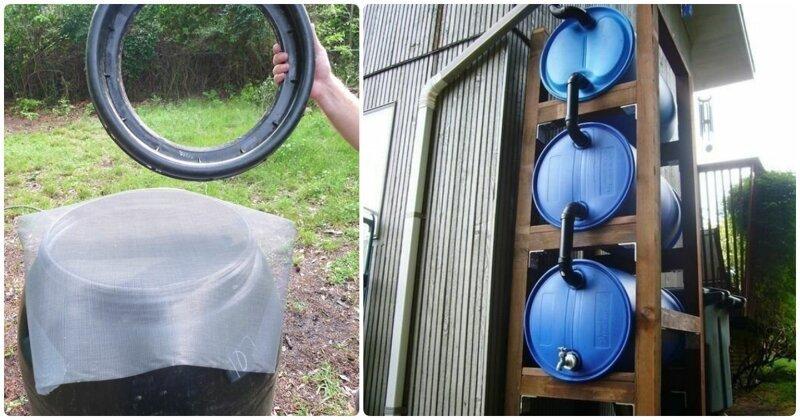 Как собрать дождевую воду на дачном участке (15фото)